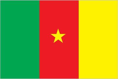 Bandiera del Camerun