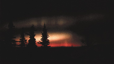 Aurora boreale (Fairbanks, Alaska)