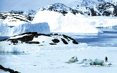 Iceberg lungo le coste della Groenlandia