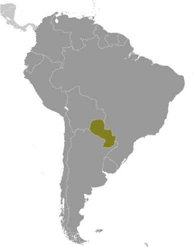 America del sud il Paraguay