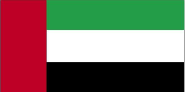 Bandiera UAE