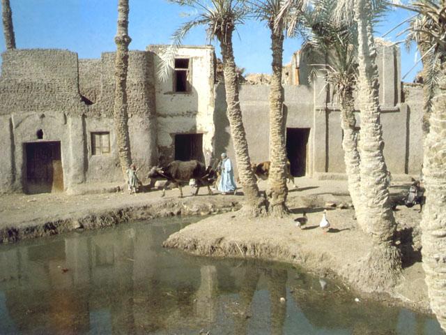 Case in terra cruda nell'oasi di Fayyum, in Egitto
