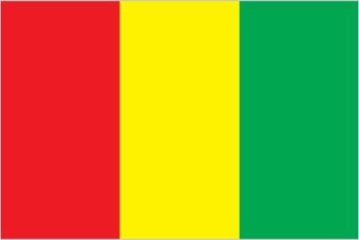 Bandiera della Guinea