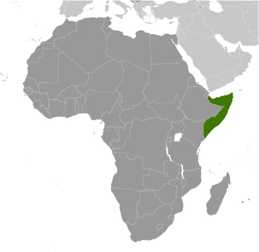 Luogo della Somalia