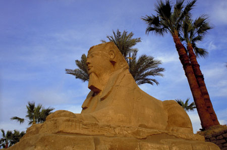 Una delle sfingi fatte collocare da Nectanebo I (XXX dinastia) sul viale da Luxor a Karnak