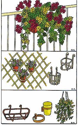 Soluzioni per adornare balconi