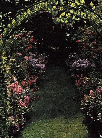 Bordure perenni lungo il sentiero di un giardino
