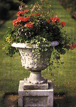 Contenitore in pietra riempito con piante da aiuola