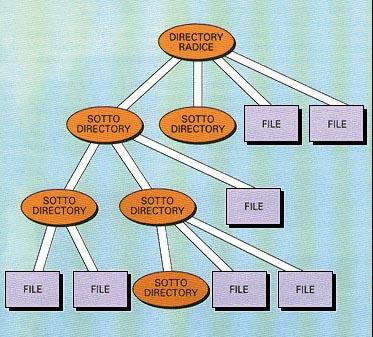 Struttura gerarchica di directory e file