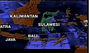 Web Trapanese Bali  e Sulawesi